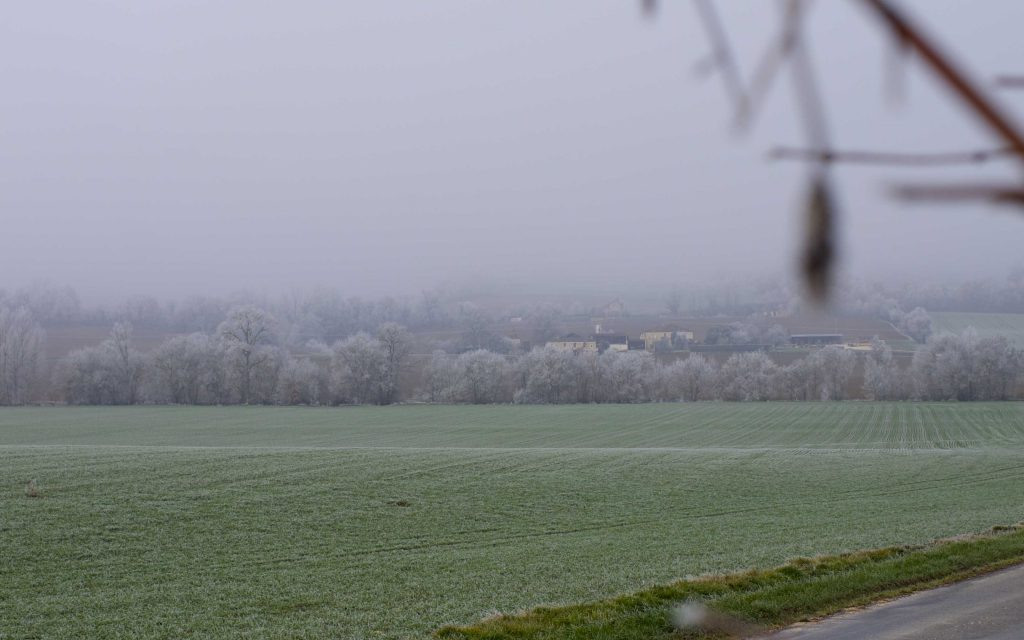 champs en hiver, campagne dans le brouillard