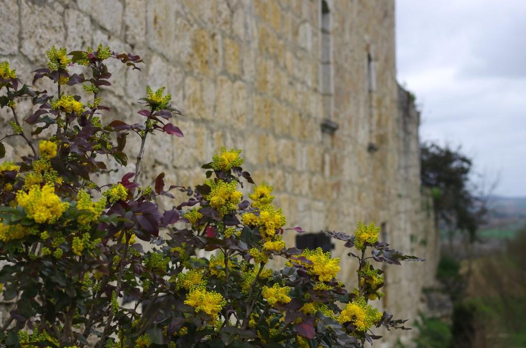 Murs des remparts, à Maubec
