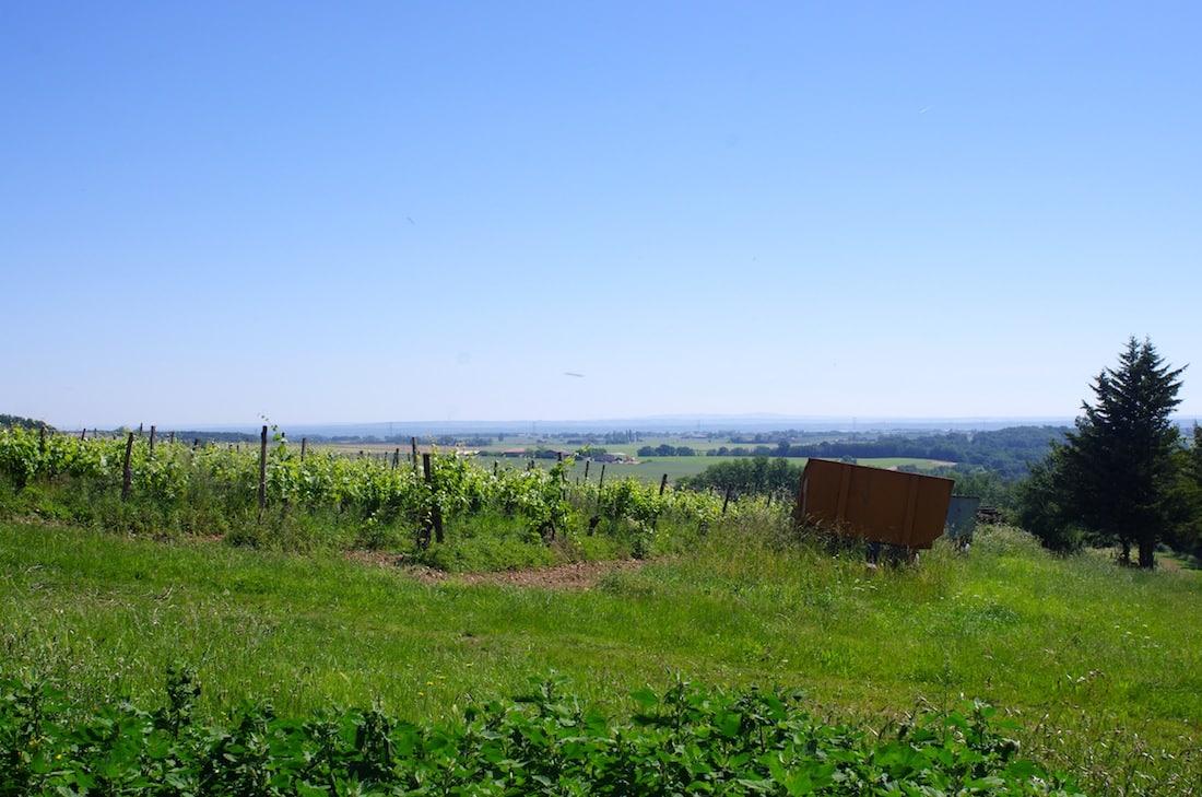 Paysage au coeur du sud ouest, Tar-et-Garonne, Occitanie