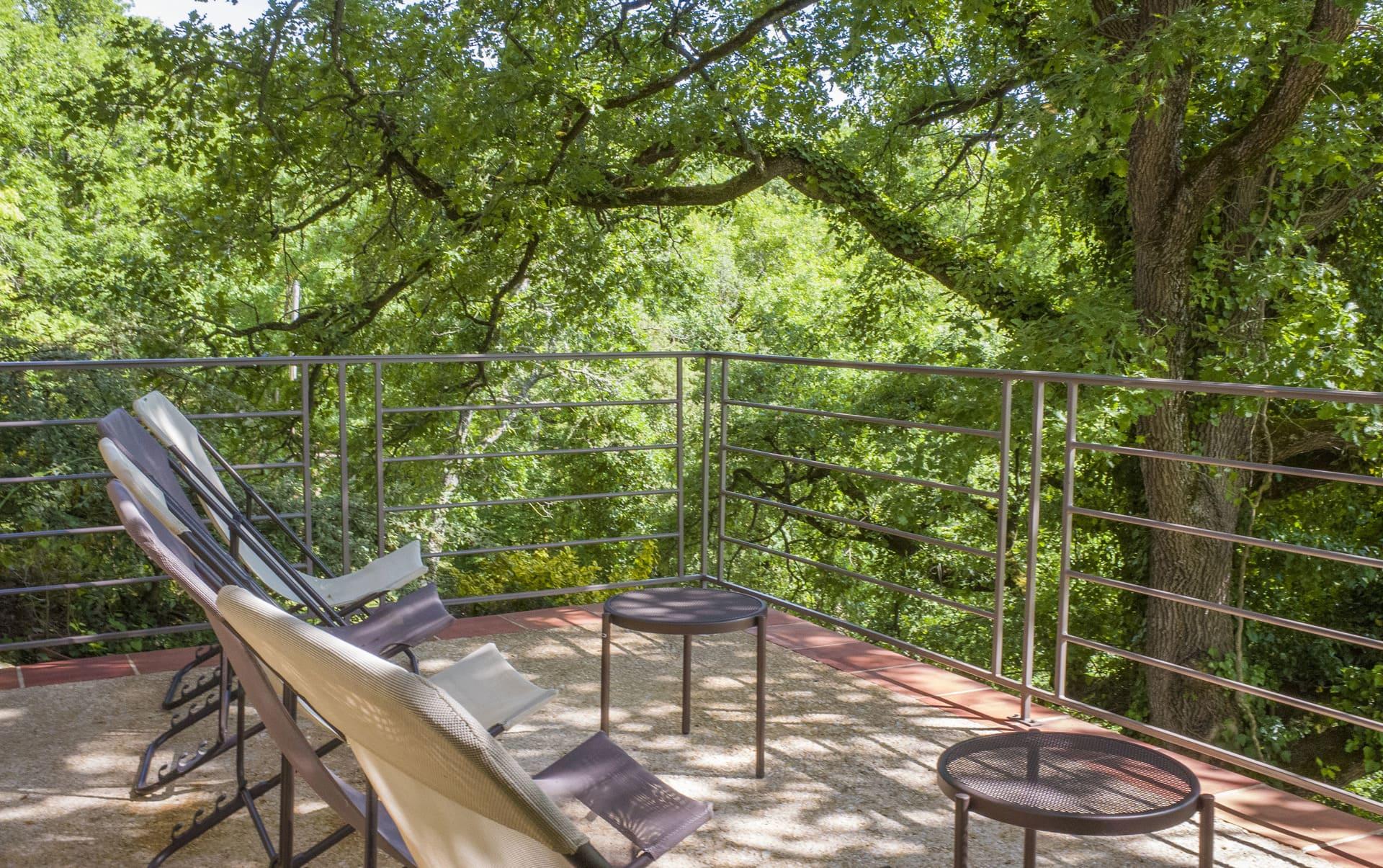 Terrasse avec chêne centenaire