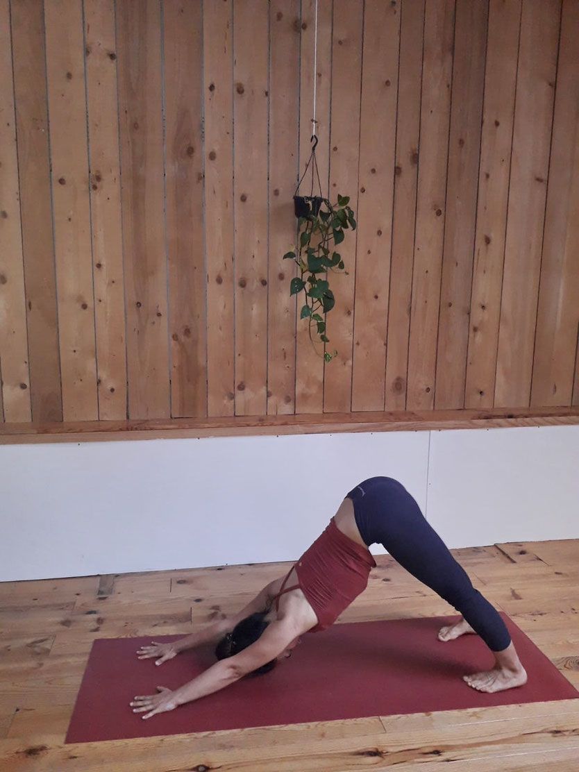 stage de yoga Elsa professeur Toulouse