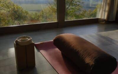 Retraite yoga proche Toulouse – Santé digestive